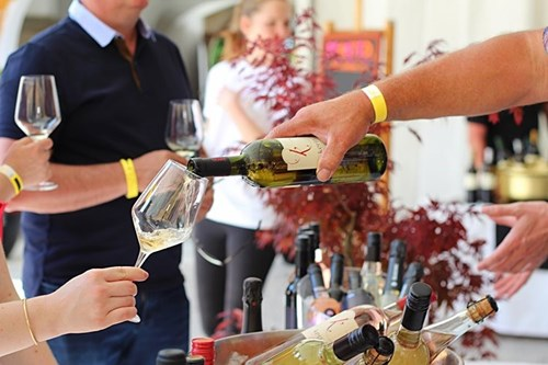 4. POP UP WINE FESTIVAL NOVO MESTO